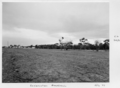 Queensland State Archives 6552 Reclamation at Broadbeach July 1959.png