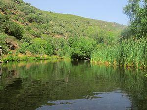 Río Manzanas.jpg