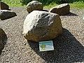 Rötlich-grauer Småland-Granit - Fundort Südholstein.jpg