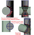 Racc-estradosso-entradosso-cilindri-rotazione.jpg