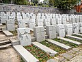 Rasos Cemetery.jpg