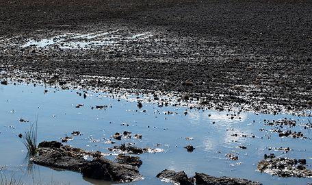 Reflection of sky in a plowed field.jpg