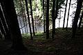 Reinbachfälle taufers 69825 2014-08-21.JPG