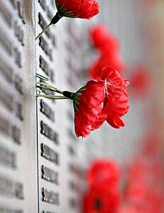 Remebrance poppy ww2 section of Aust war memorial.jpg