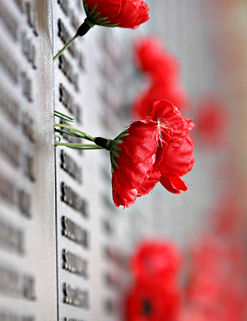 Remebrance poppy ww2 section of Aust war memorial.jpg