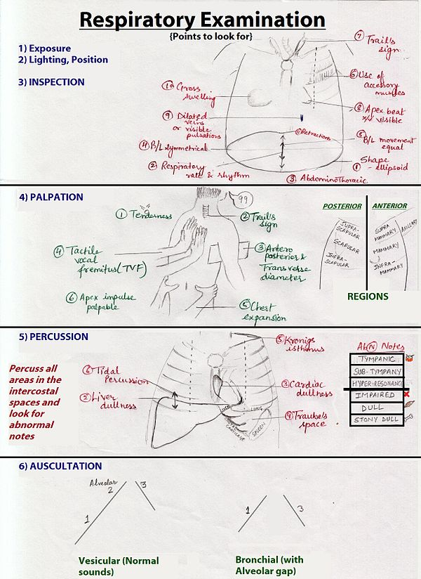 Respiratory Therapy types of writing