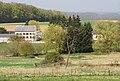 Rhamnus cathartica Ehner Luxembourg 04.jpg