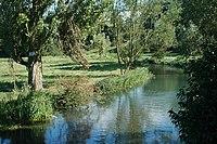 River Coln.jpg