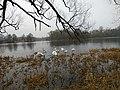 River Muhaviec in Brest 5.jpg