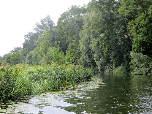 River Nene nearing Cotterstock - July 2014 - panoramio