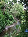 River Stour downstream of Great Cornbow - geograph.org.uk - 806560.jpg