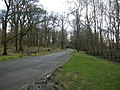 Road through Pollok Country Park (geograph 4836471).jpg
