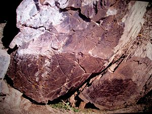 Prehistoric Rock-Art Site of the Côa Valley - Various zoomorphic and anthropomorphic designs on granite slabs