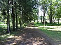 Rojus 30265, Lithuania - panoramio.jpg