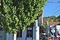 Roseburg, Oregon - BPOE 02.jpg