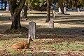 Ross Bay Cemetery, Victoria, British Columbia, Canada 07.jpg