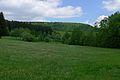 Rothaarkamm Hüttenberg mit Buchhelle.jpg