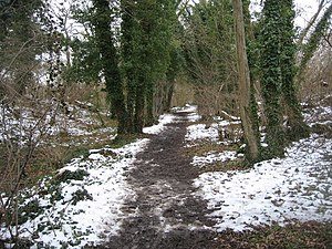 English: Rubber boots recommended Path along t...