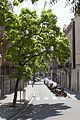 Rutes Històriques a Horta-Guinardó-garrotxa01.jpg