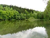 Rybník Neratov NR 2.jpg