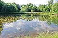 Rybník v Brtné (Dolní Žandov).jpg