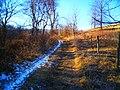 SK - Winter Trail (6539063865) (2).jpg
