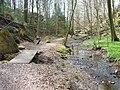 Salamandertal-Schlucht – Naturdenkmal (Geotop-Nr. 472R026) 02.JPG