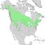 Salix bebbiana range map 1.png