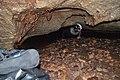 Samar pećina 14.jpg