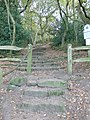 Sandstone steps on the Sandstone Trail - geograph.org.uk - 1561656.jpg