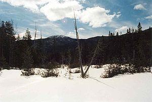 Santanoni Peak - Image: Santanoni Peak seen from Bradley Pond