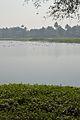 Santragachi Lake - Howrah 2013-01-25 3589.JPG