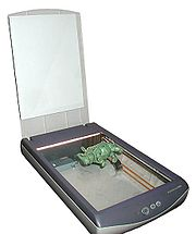 Desktop scanner, with the lid raised. An object has been laid on the glass, ready for scanning.