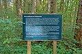 Schleitheim Auenwaldreservat Seldenhalde Bild 1.jpg