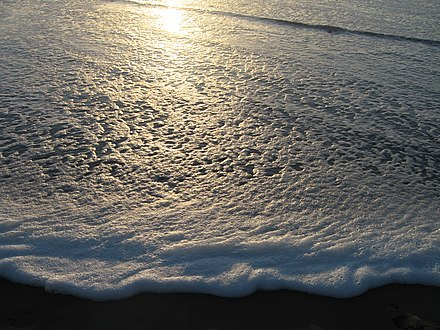 Sea froth at sunset Sea Froth at Sunset (109157670).jpg