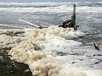 Sea foam at Ocean Beach in San Francisco -1 on 3-25-11.jpg