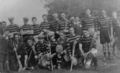 Seir Kieran, Offaly JHC champions 1937 and IHC champions 1938.png