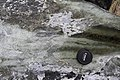 Serpentinite in Geopark on Albertov (3).JPG