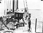 Seven crew on the deck of a sailing vessel, 1890-1953 (7688335140).jpg