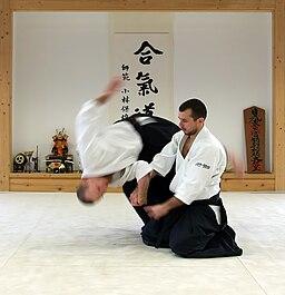 https://upload.wikimedia.org/wikipedia/commons/thumb/e/e3/Shihonage.jpg/256px-Shihonage.jpg