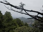 Shimla Hill-view.jpg