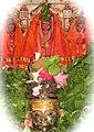 Shree Pimpleshwar Mahadev , Saldi.jpg