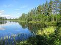 Sidsjön, Källsjön, Ockelbo kn 3998.jpg