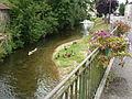 Signy-l'Abbaye (Ardennes) Vaux River.JPG
