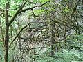 Silver Falls State Park 05.jpg