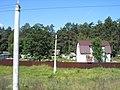 Sinezyorskiy, Bryanskaya oblast' Russia, 242110 - panoramio.jpg