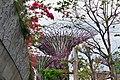 Singapore - panoramio (189).jpg