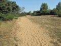 Site des Charmes (Ain) 4.jpg