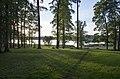 Skats uz Balvu ezeru caur kokiem - panoramio.jpg