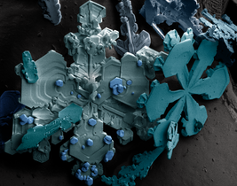 Snow crystals.png
